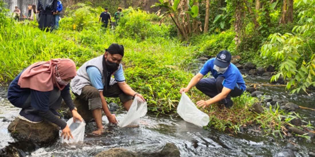 Perikanan UGM Sebar Benih Ikan di Kali Kuning
